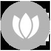 skincare icon_new